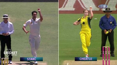 Cheatle action similar to Starc