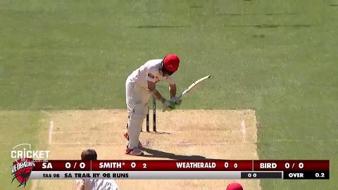 SAs-Smith-strikes-halfcentury-against-Tigers-still