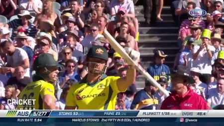 Stoinis stars with scintillating knock