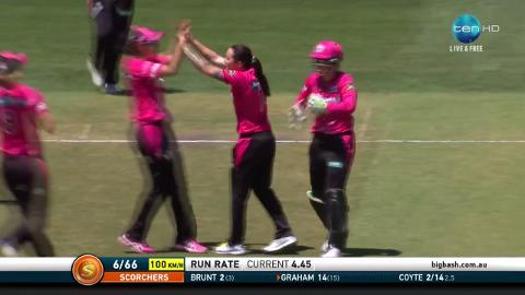 Coyte crushes Scorchers in WBBL final