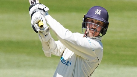 Maddinson returns to Shield with half-century