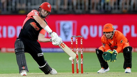 Marsh gives Scorchers scare with fighting 55