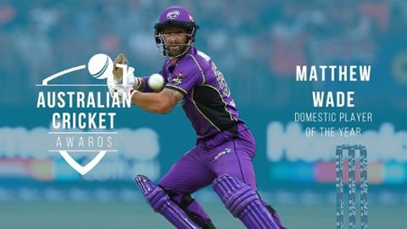 Domestic Player of the Year: Matthew Wade