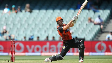 Mitch-Marsh-plunders-unbeaten-fifty-still