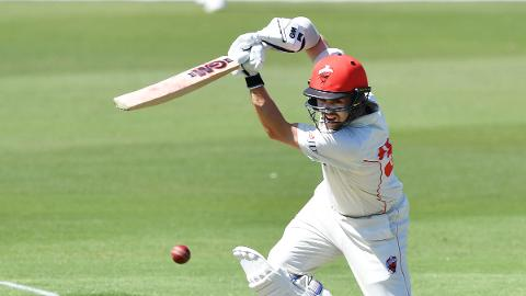 Head leads the way for Redbacks