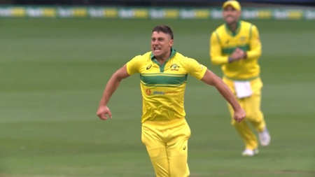 Ponting's World Cup danger man: Marcus Stoinis