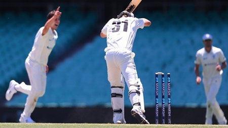 Worst leaves of the 2019-20 Marsh Sheffield Shield season