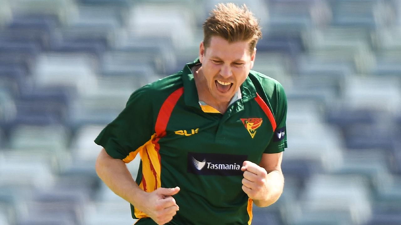 James Faulkner's 2019 Marsh Cup Highlights