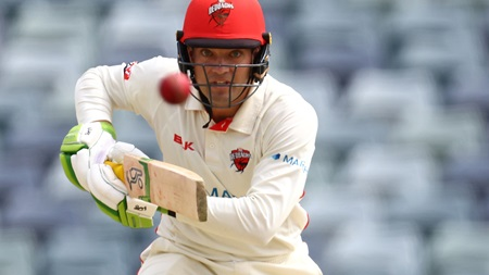 Carey marks Shield return with unbeaten 82