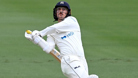 Maddinson tees off in entertaining Shield cameo