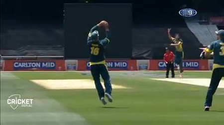 World Cup Watch: Starc shines again