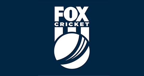 Fox Cricket Slate