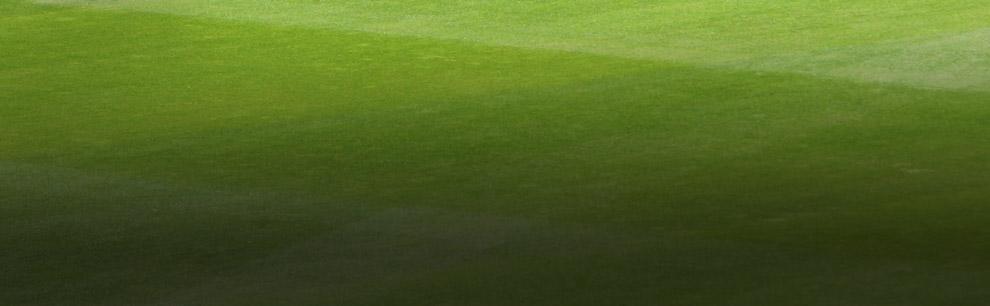 South Africa v Pakistan - Men's | cricket.com.au