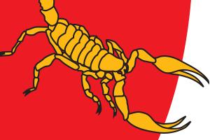 SA Scorpions