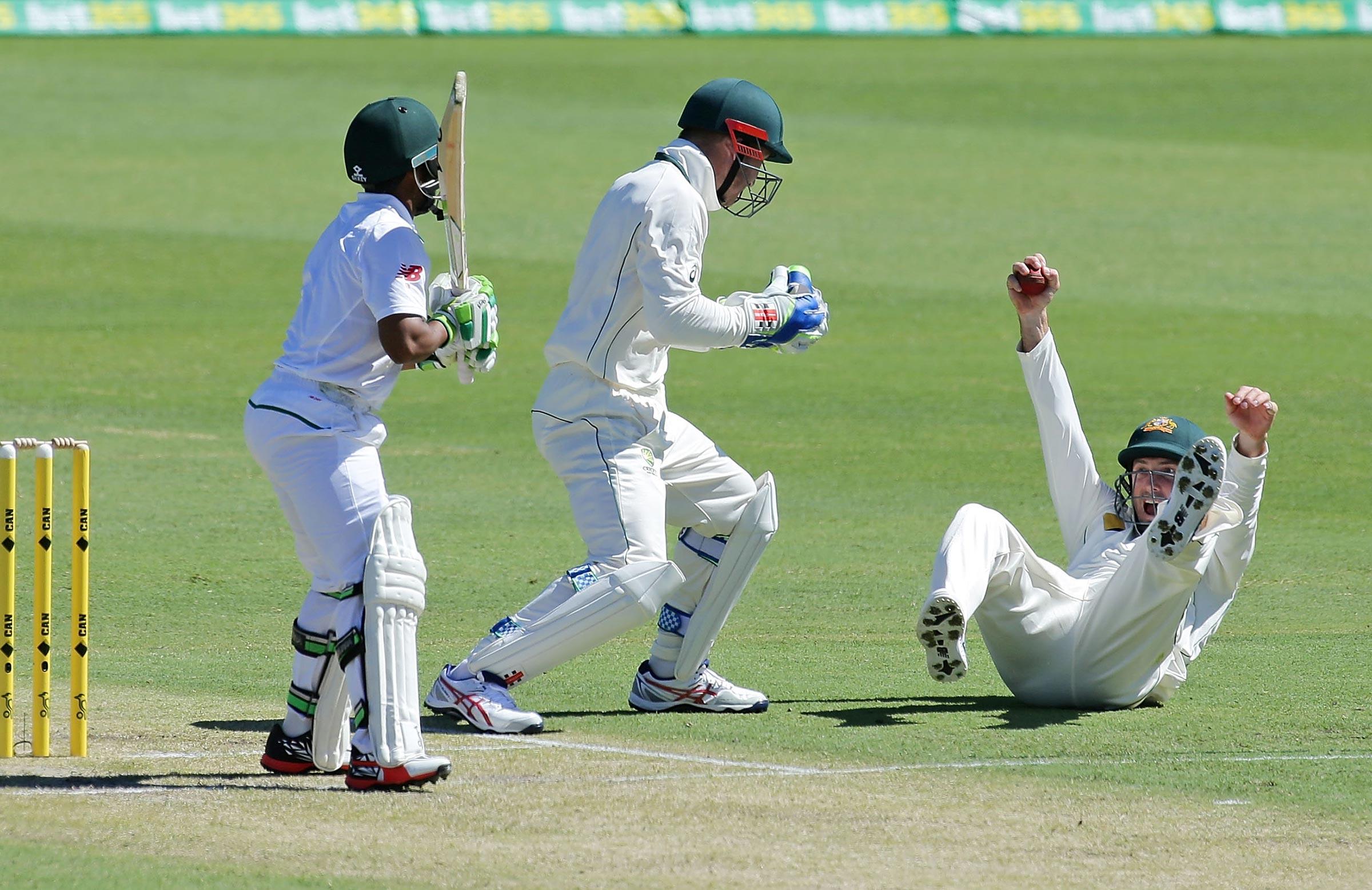 cricket - photo #17