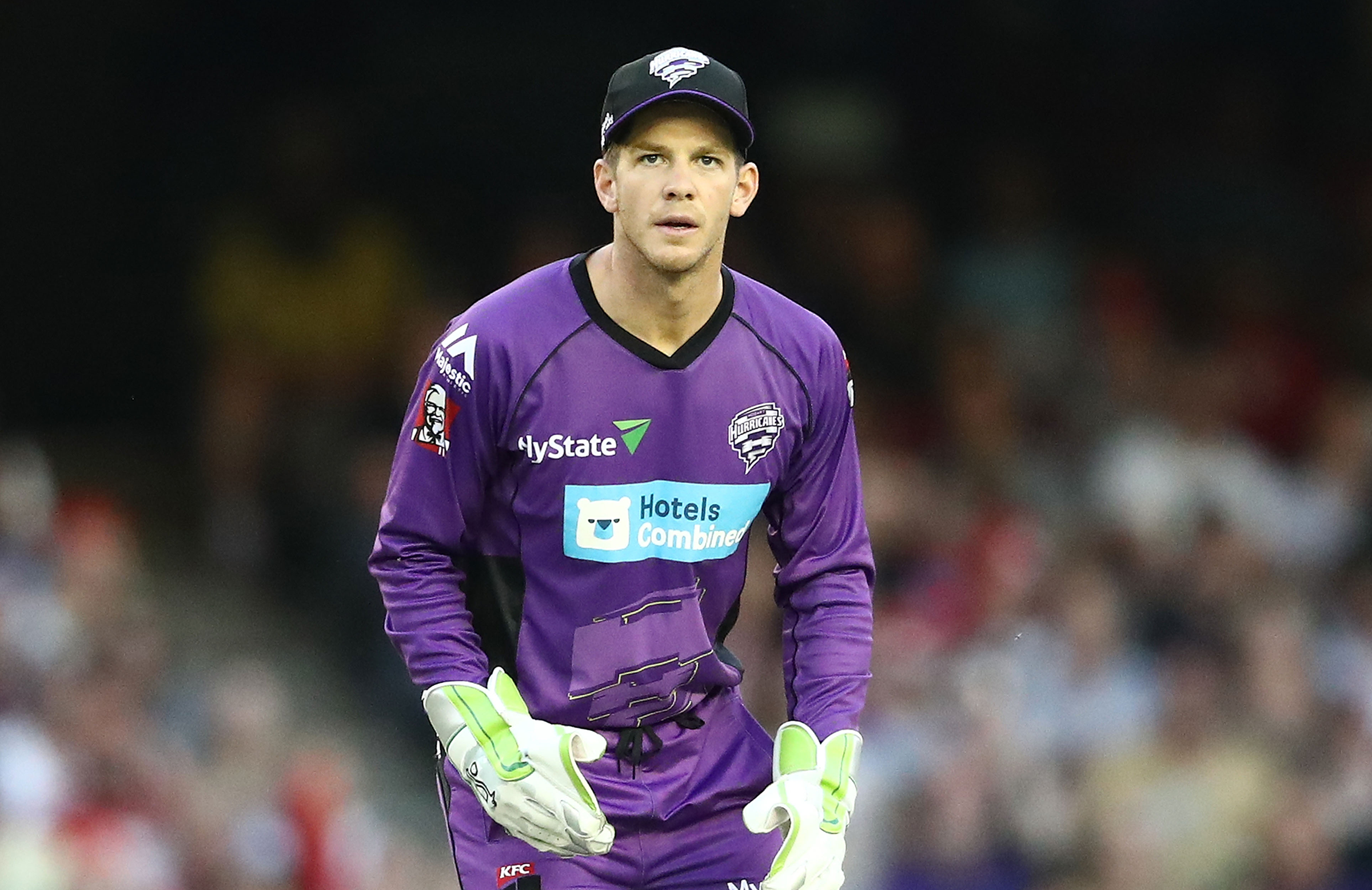 Image result for Tim Paine
