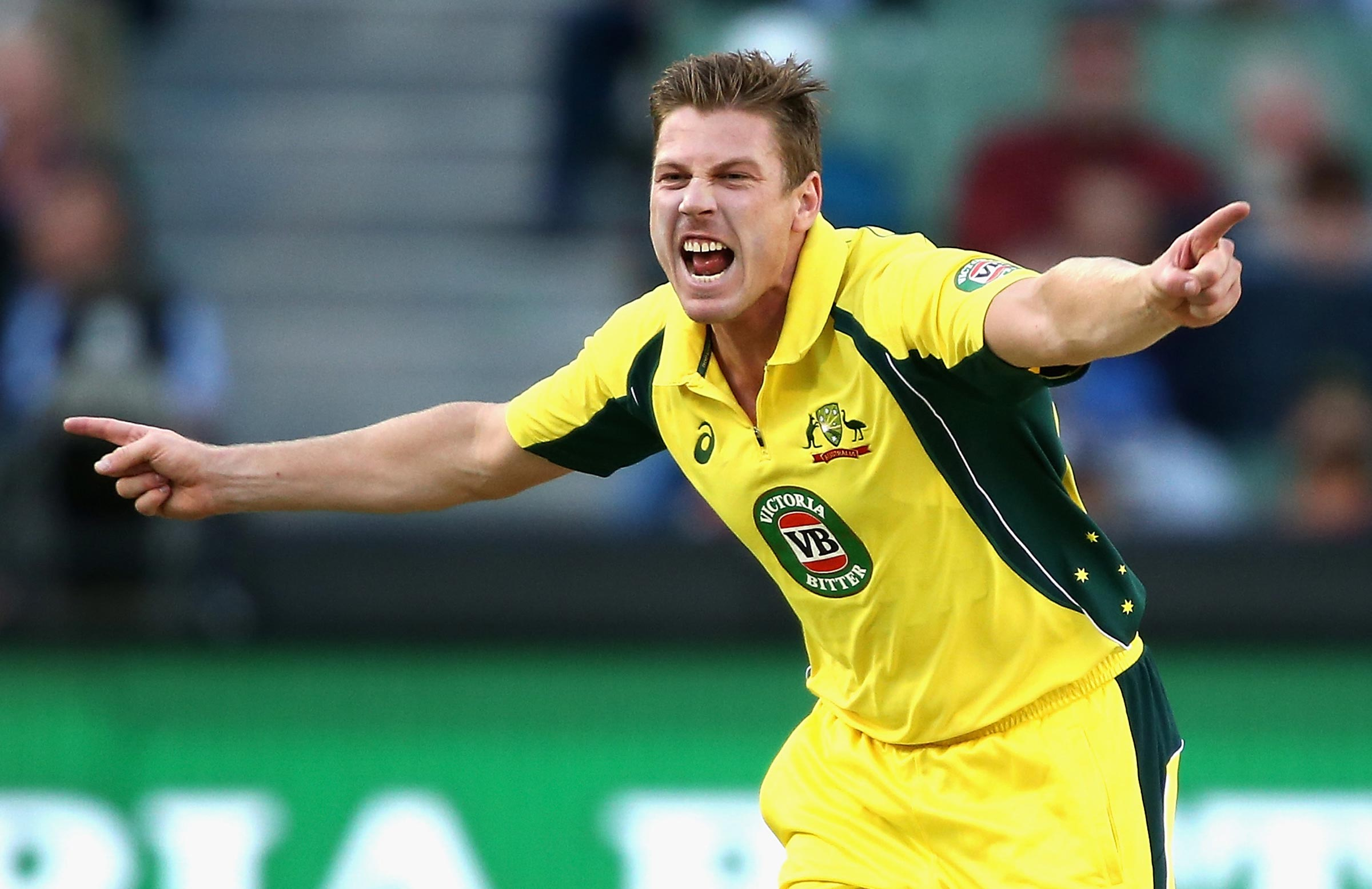 James Faulkner recalled for limited overs series against India