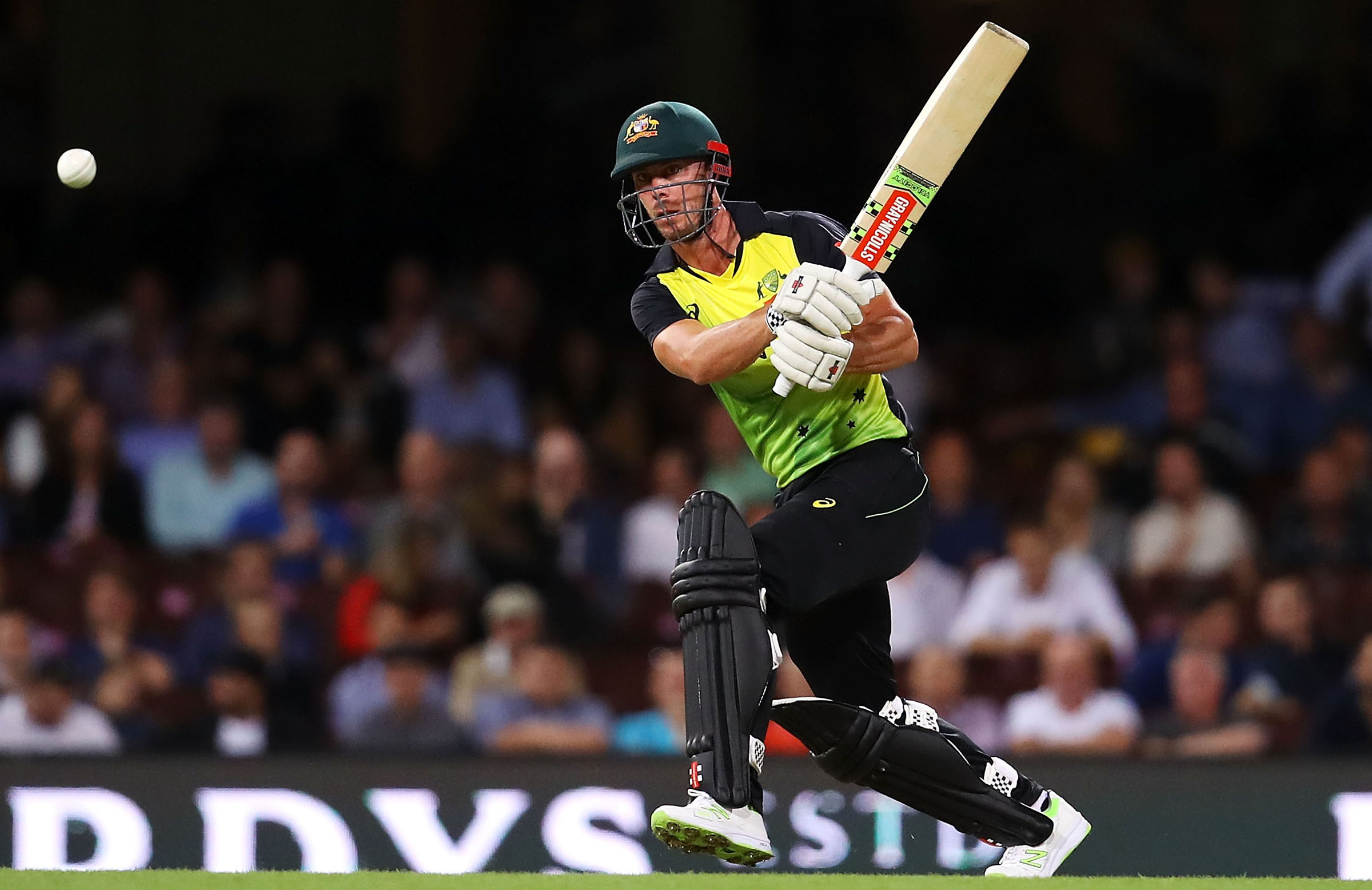 Lynn is looking for a substantial contribution in the final. (Cricket Australia)