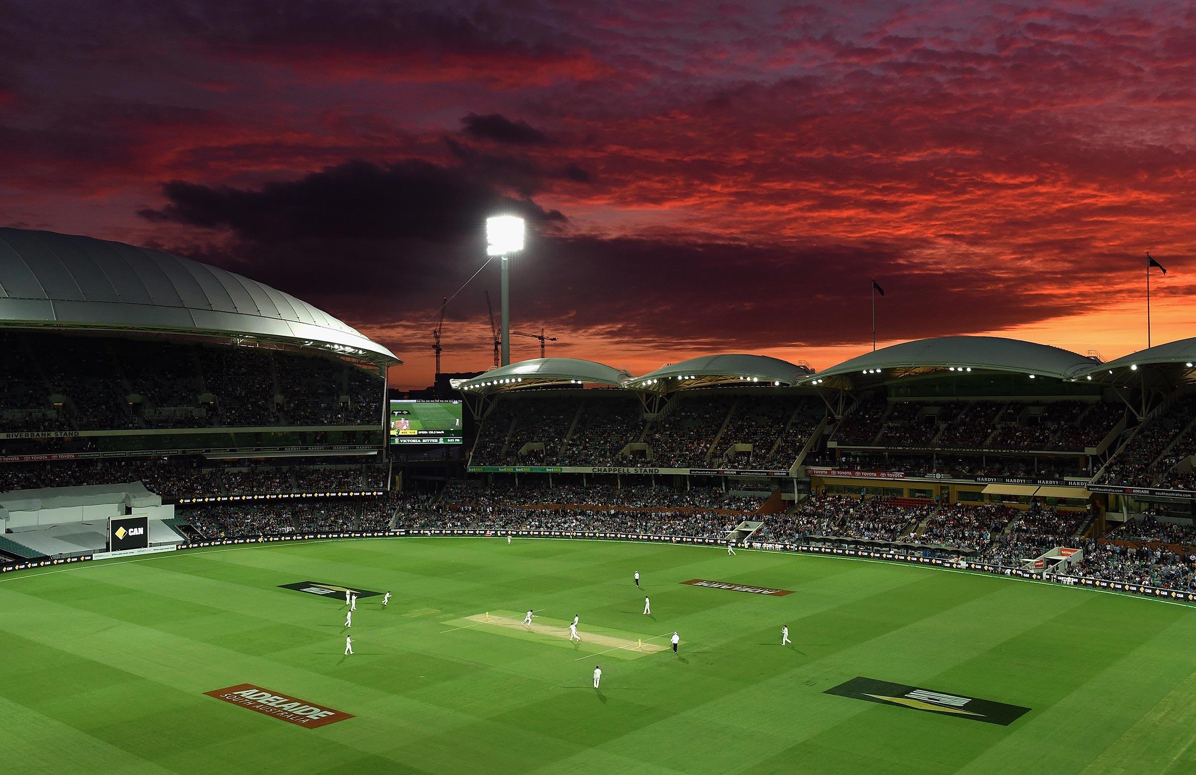 Adelaide Oval hosting its first day-night Test in 2015 // Getty