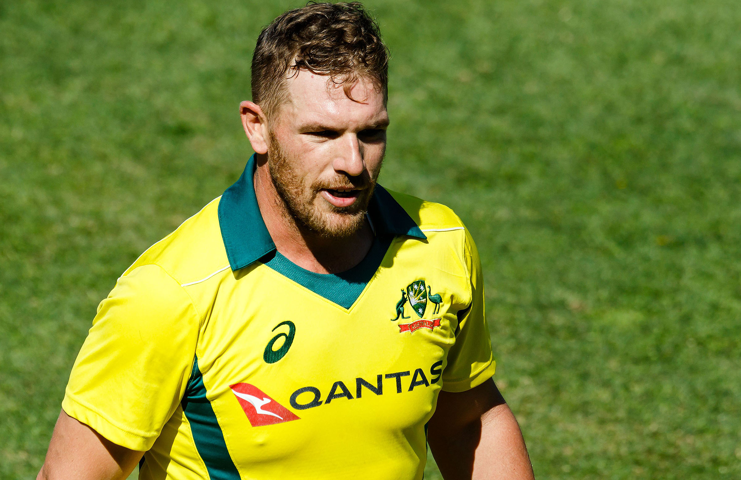 Aaron Finch (Cricket Australia)
