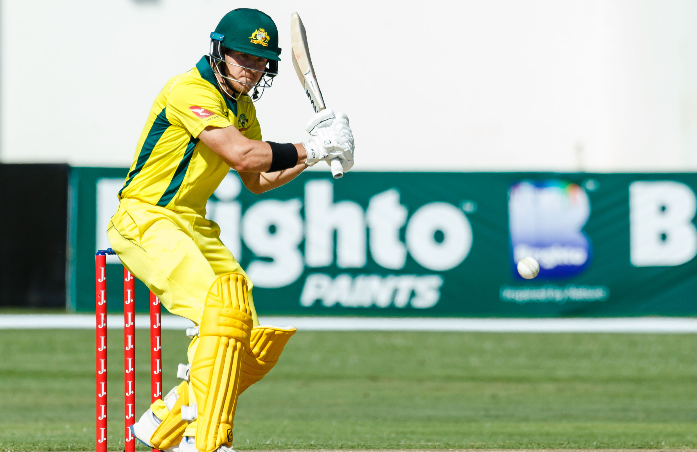 D Arcy Keeps His Focus Short Term Cricket Com Au