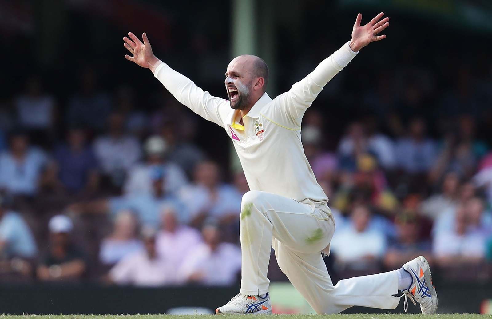 Milestone wickets special for Lyon | cricket.com.au
