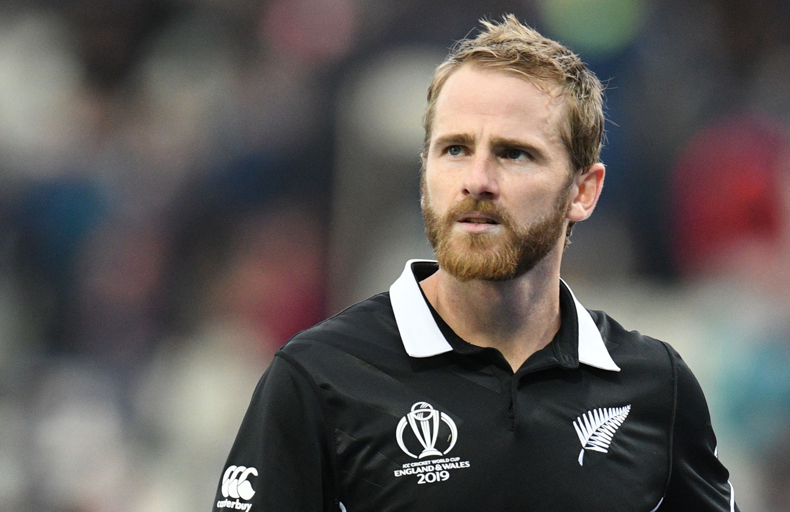 Vettori hails Williamson as best Kiwi ever | cricket.com.au