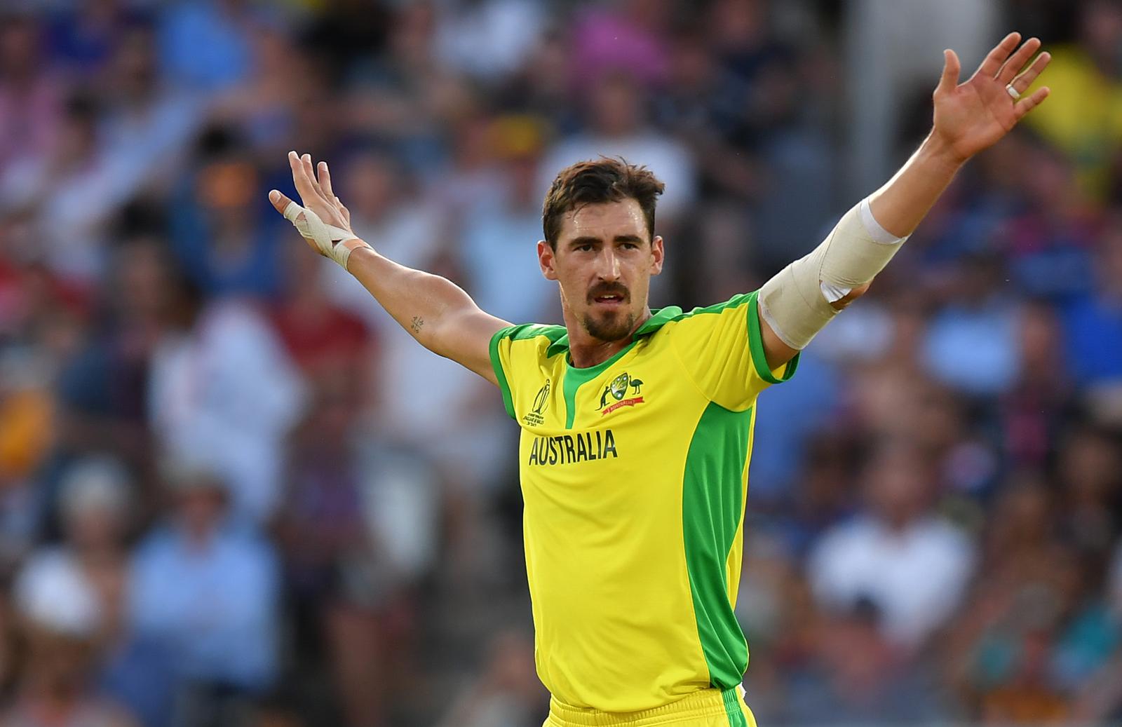 Injury helped Starc hit reset button: Haddin | cricket.com.au