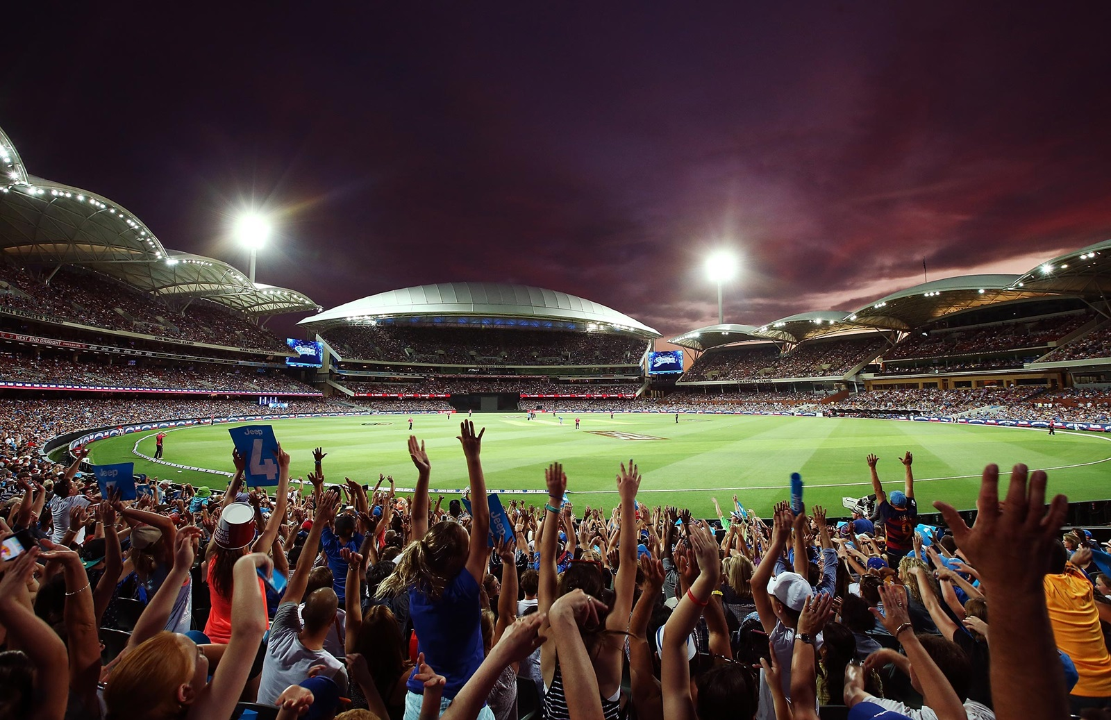 All You Need To Know for the Big Bash League | cricket.com.au