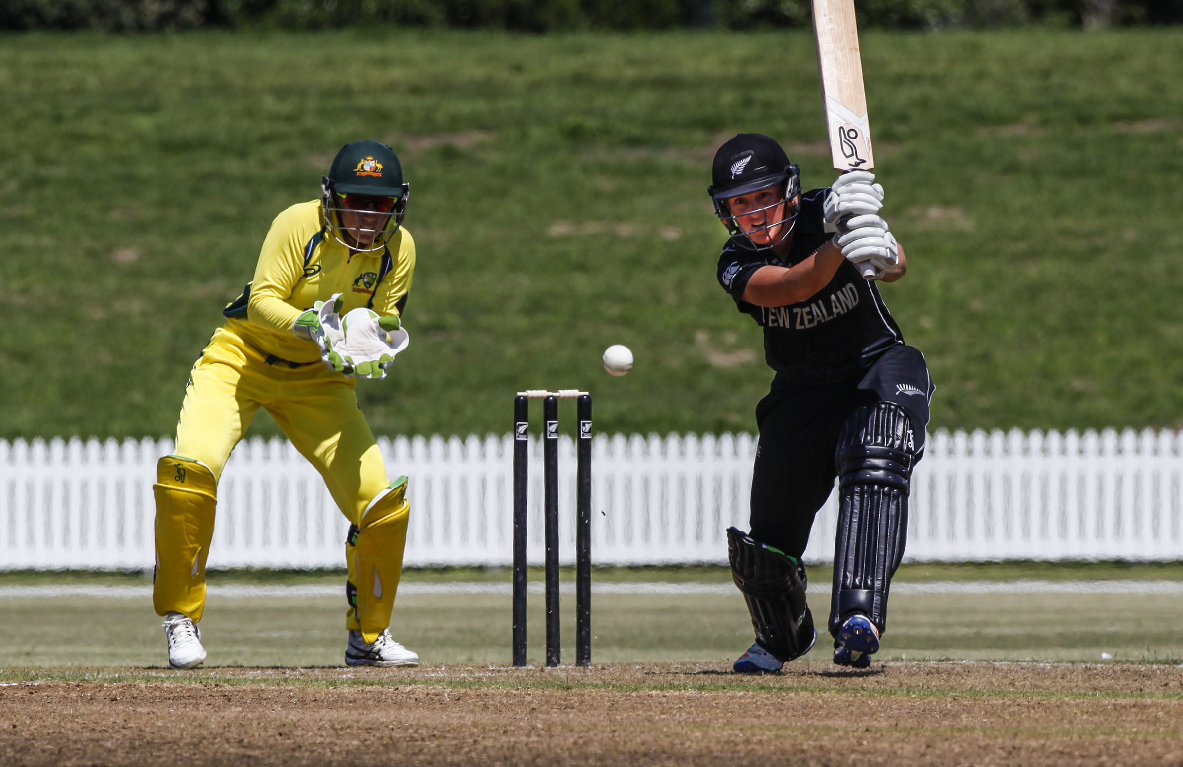 Australia will open the international summer against New Zealand // Getty