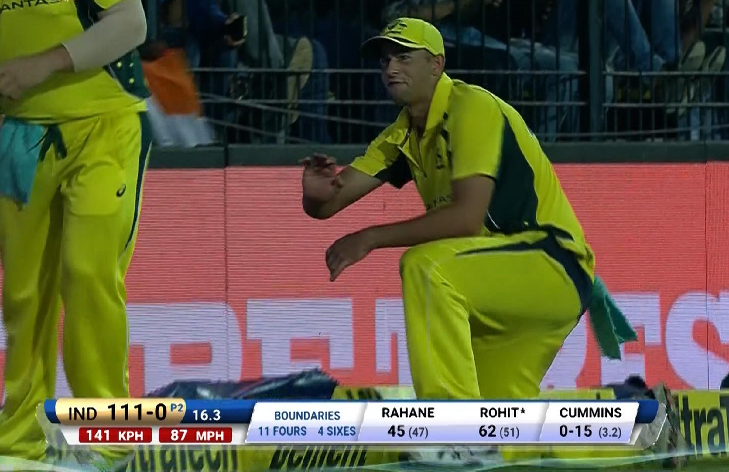 Agar reacts after sustaining the injury near the boundary // Fox Sports