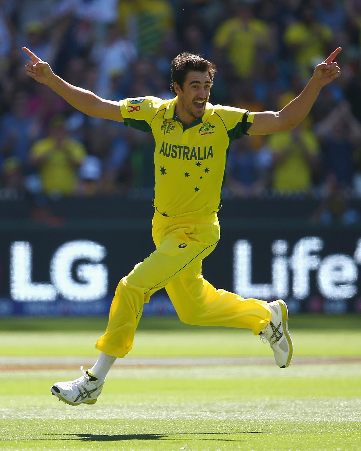 Image result for mitchell starc world cup