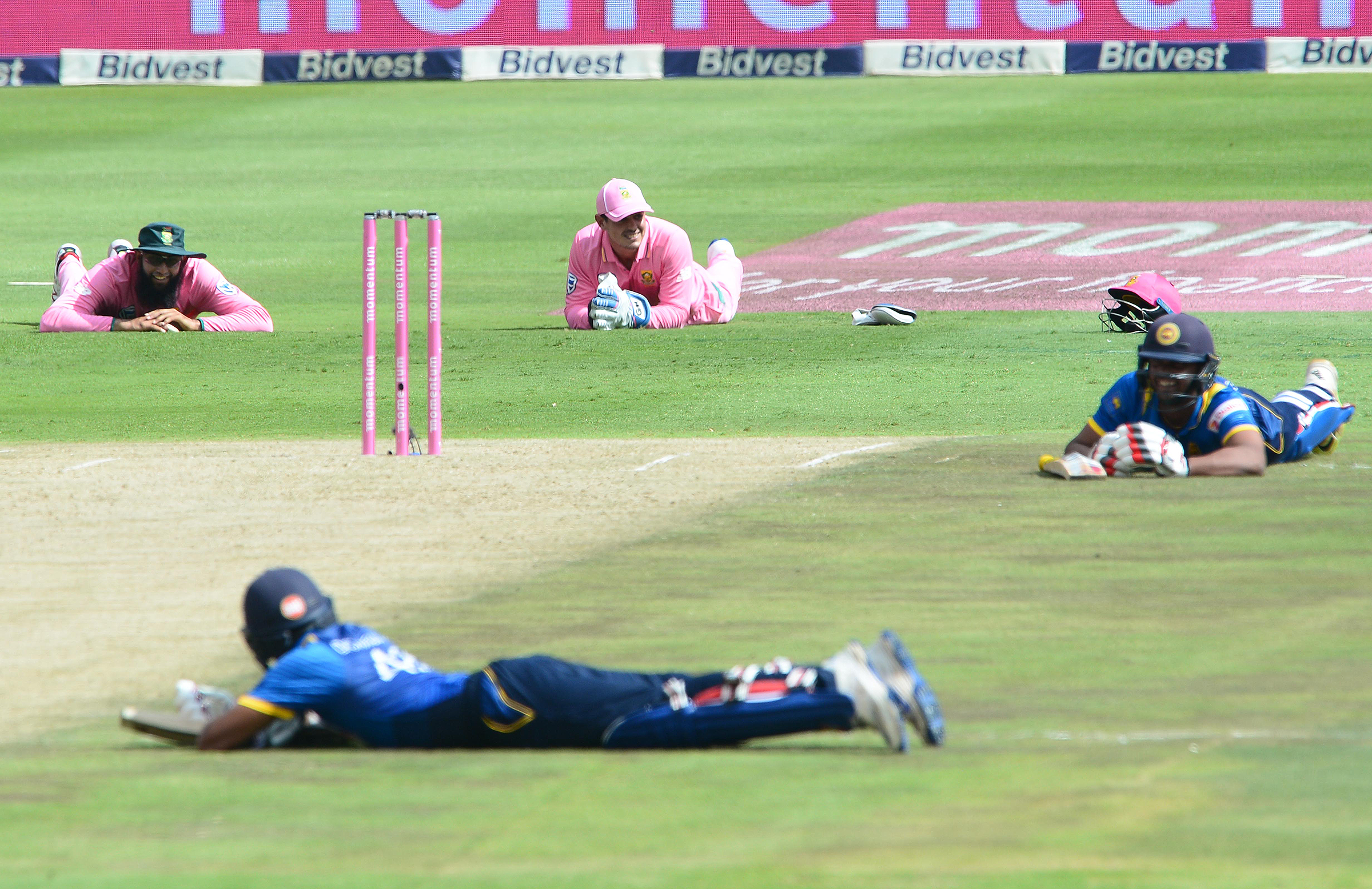 Players duck for cover as bees swarm The Wanderers // Getty