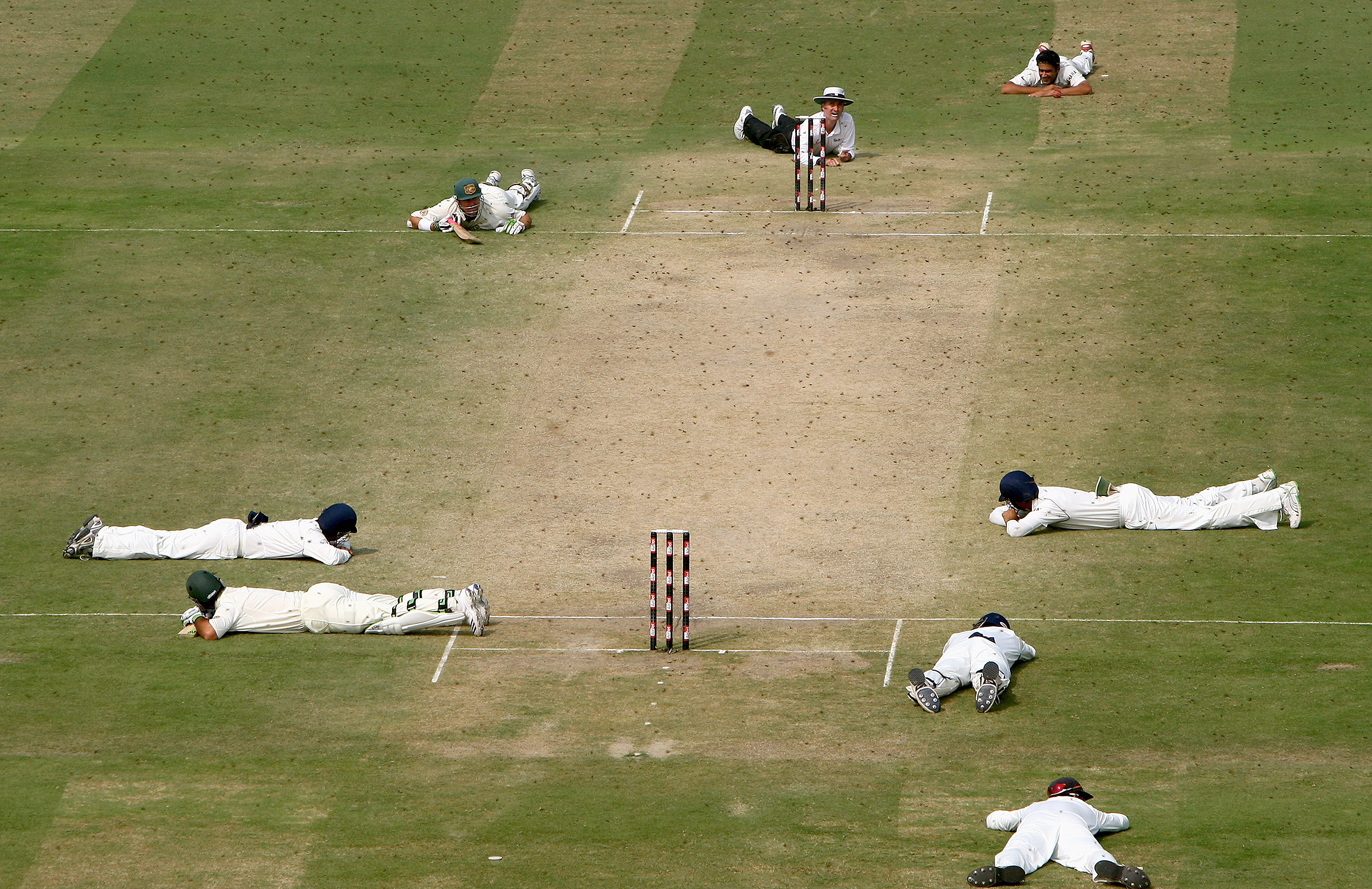 Australia's 2008 Test against India in Delhi was famously halted by a swarm of bees // Getty