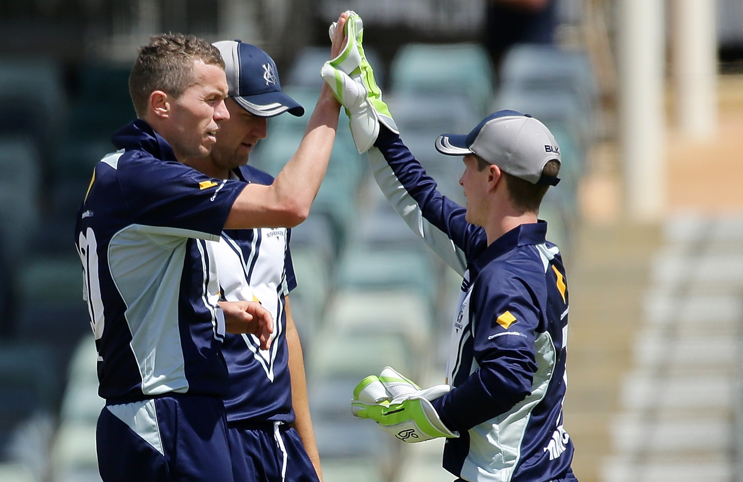 Siddle high-fives Harper after a wicket against WA // Getty