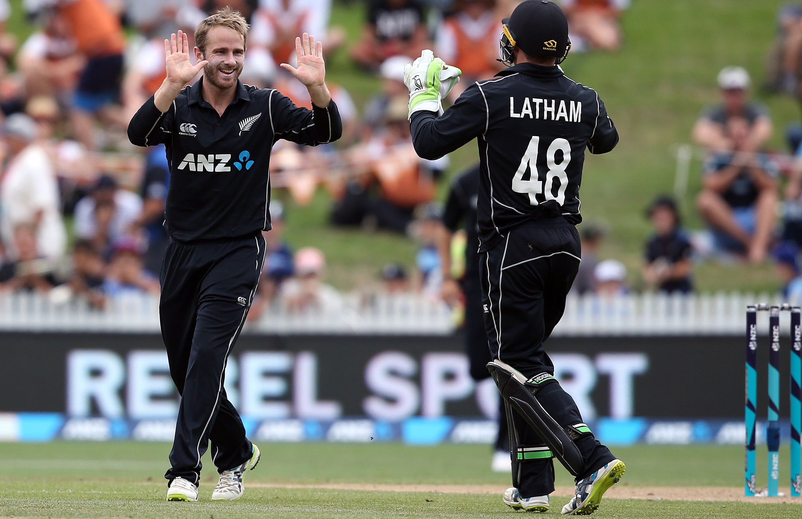 Kane Willamson celebrates a wicket during New Zealand's victory in Hamilton // Getty