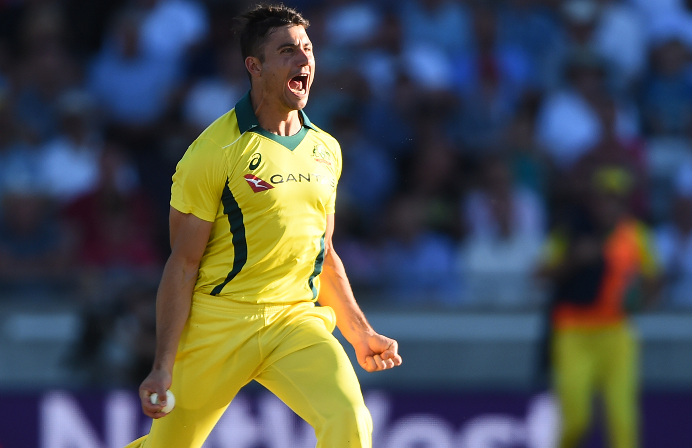 Stoinis removed the dangerous Hales for 49 // Getty