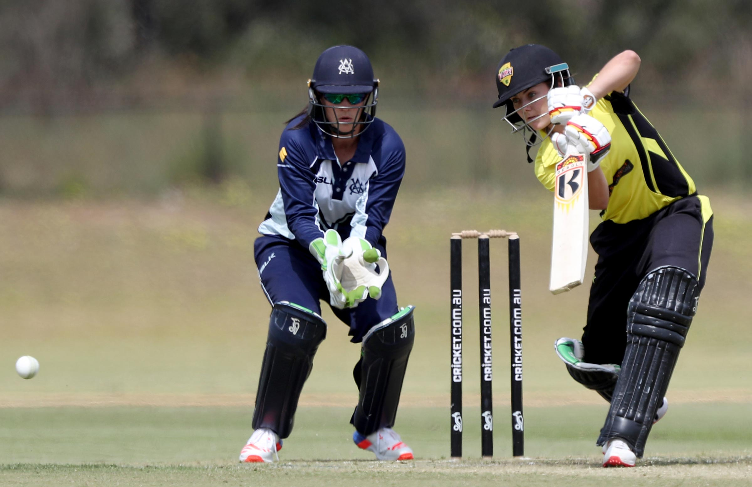 Graham bats for Western Australia in the WNCL // AAP