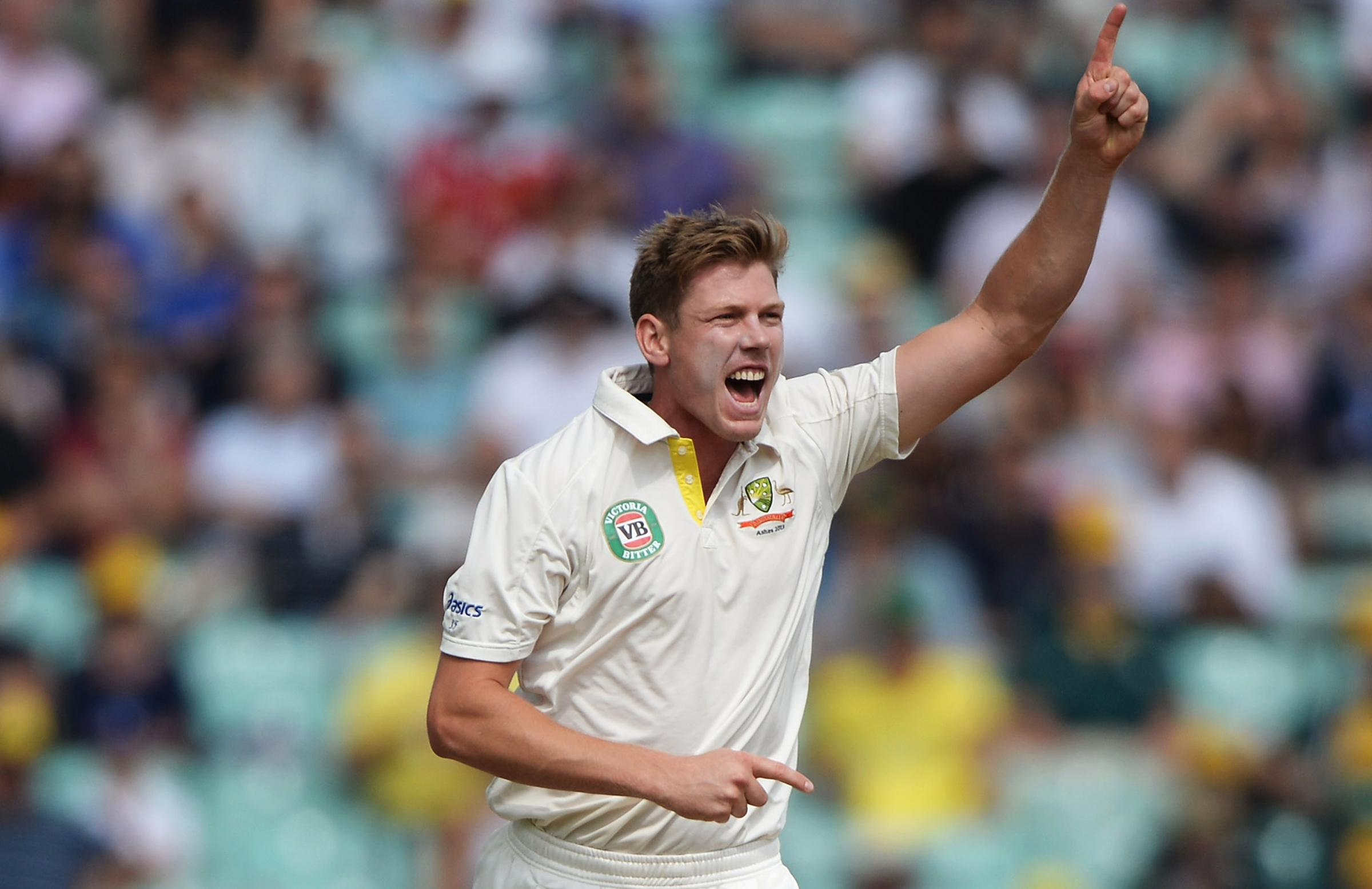 Faulkner celebrates a wicket during his only Test // Getty