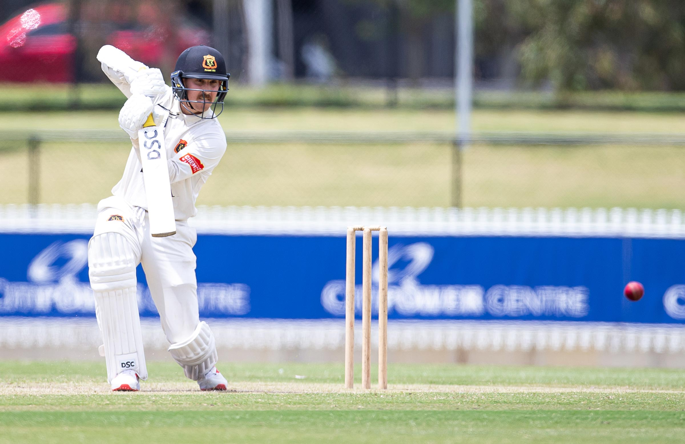 Maddinson hit a stylish half-century for St Kilda // Arj Giese Photography