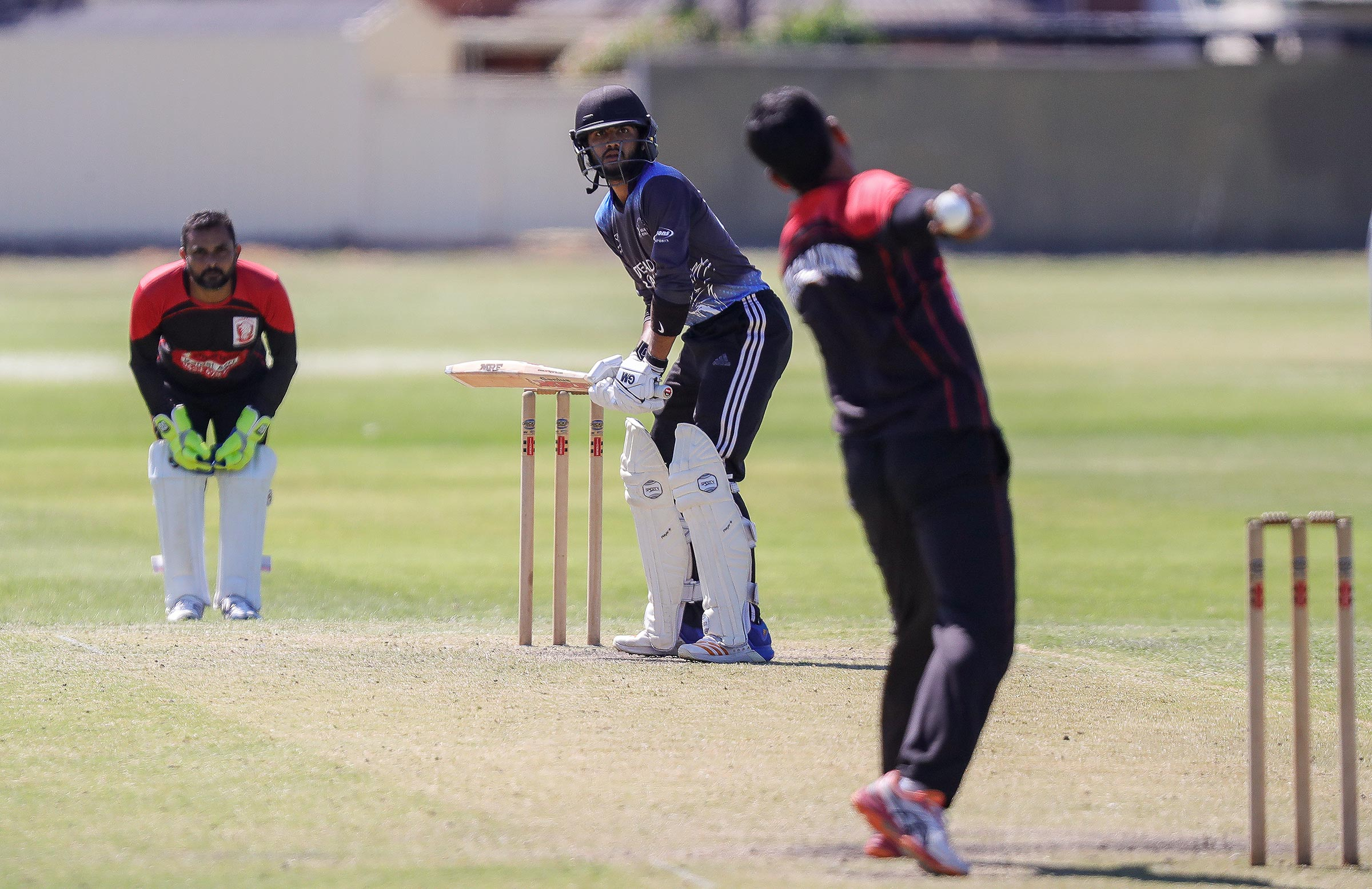 A file photo of club cricket in Adelaide // Supplied