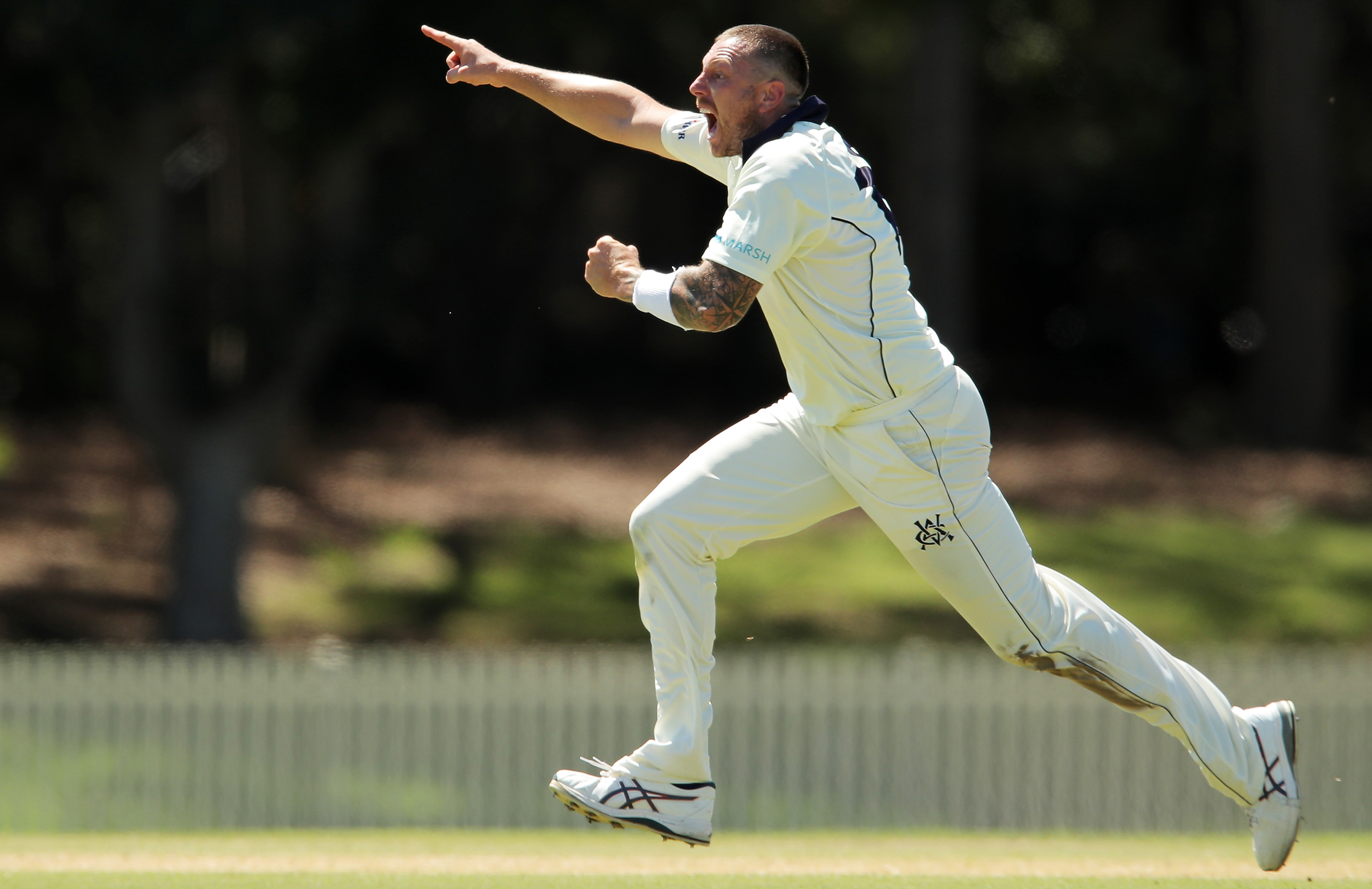 Pattinson has taken eight wickets in his two Shield games this year // Getty