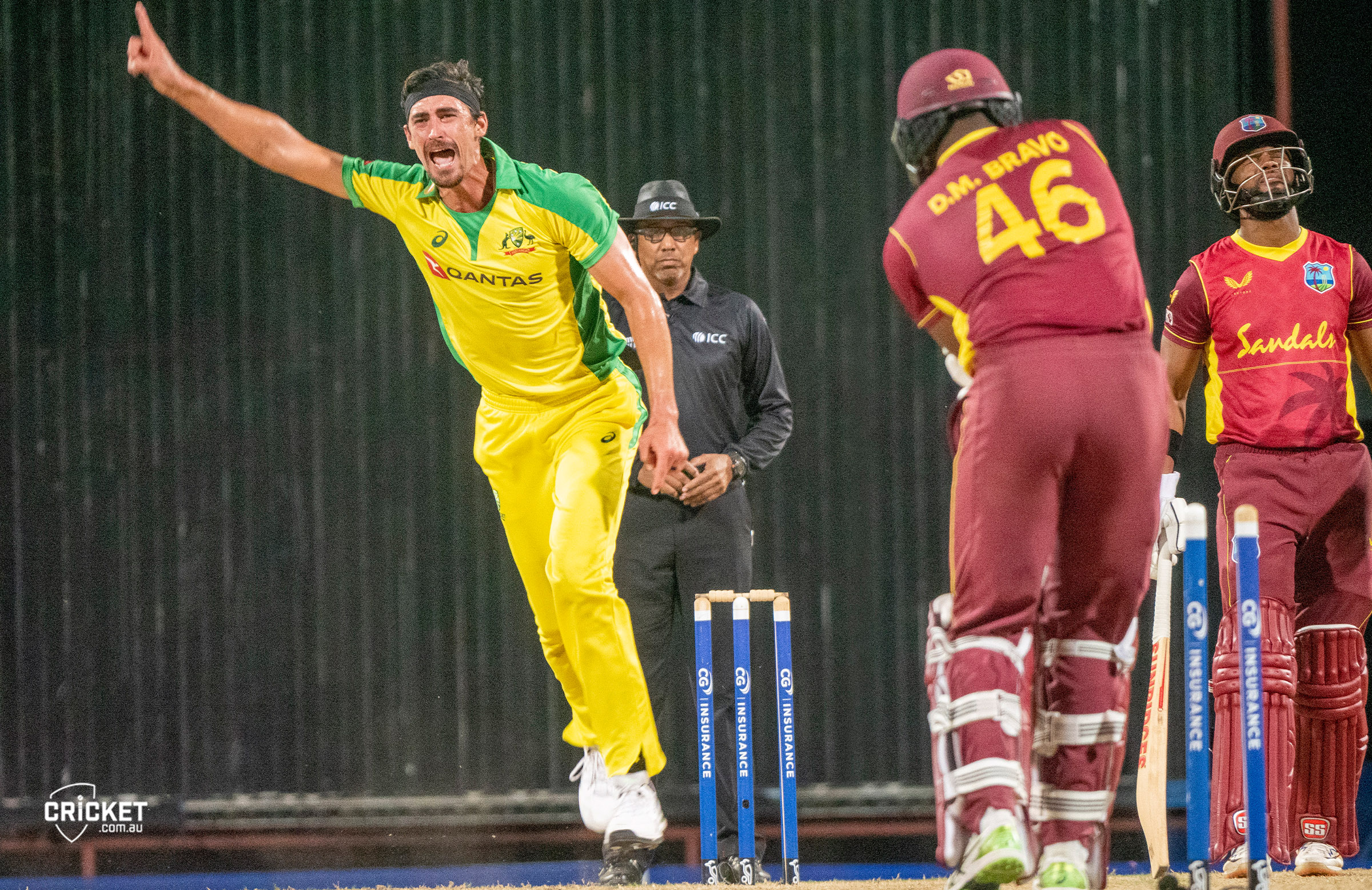 Starc celebrates the wicket of Darren Bravo // cricket.com.au