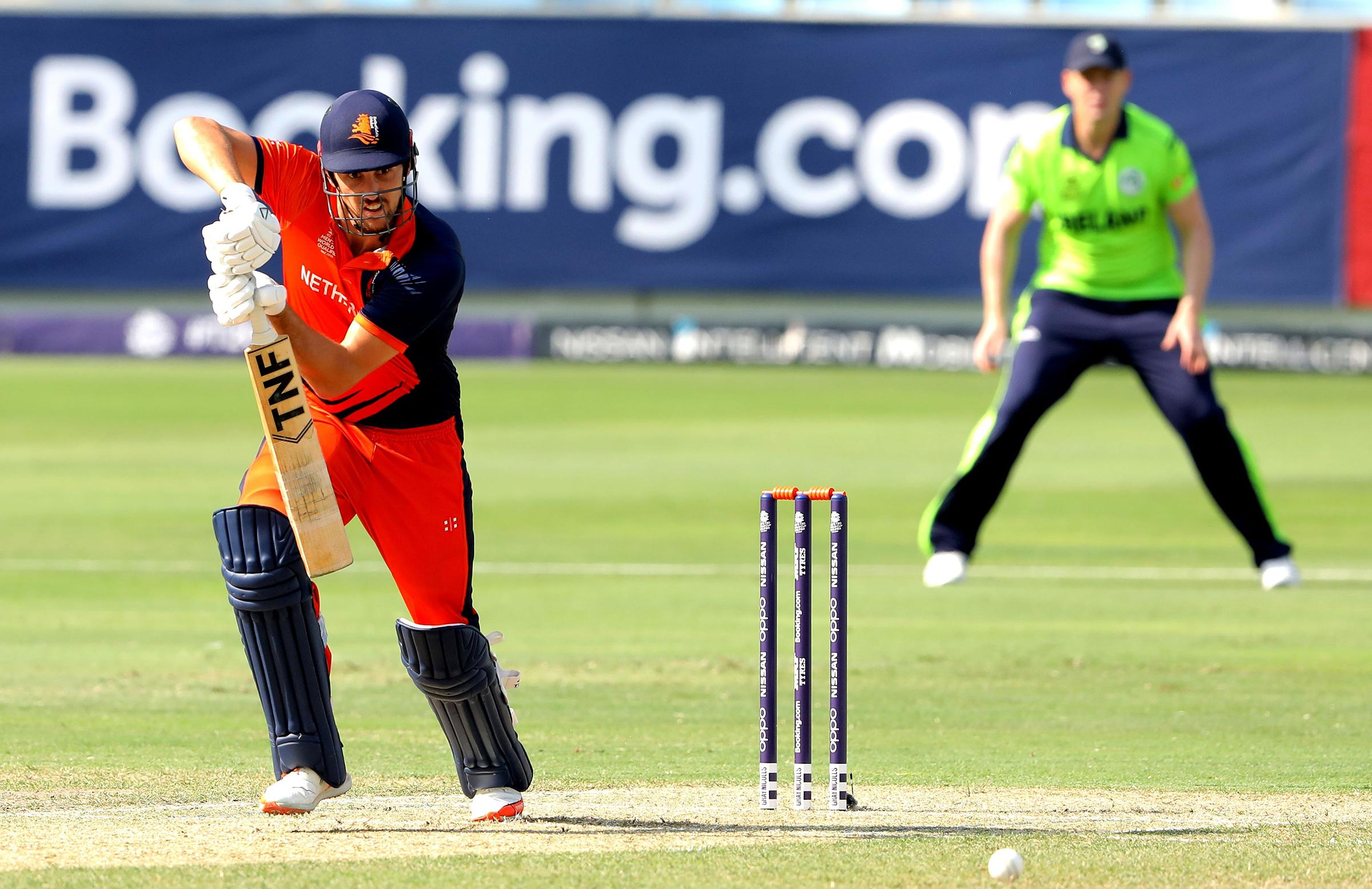 Cooper is one of the Dutch team's most reliable batsmen // Getty