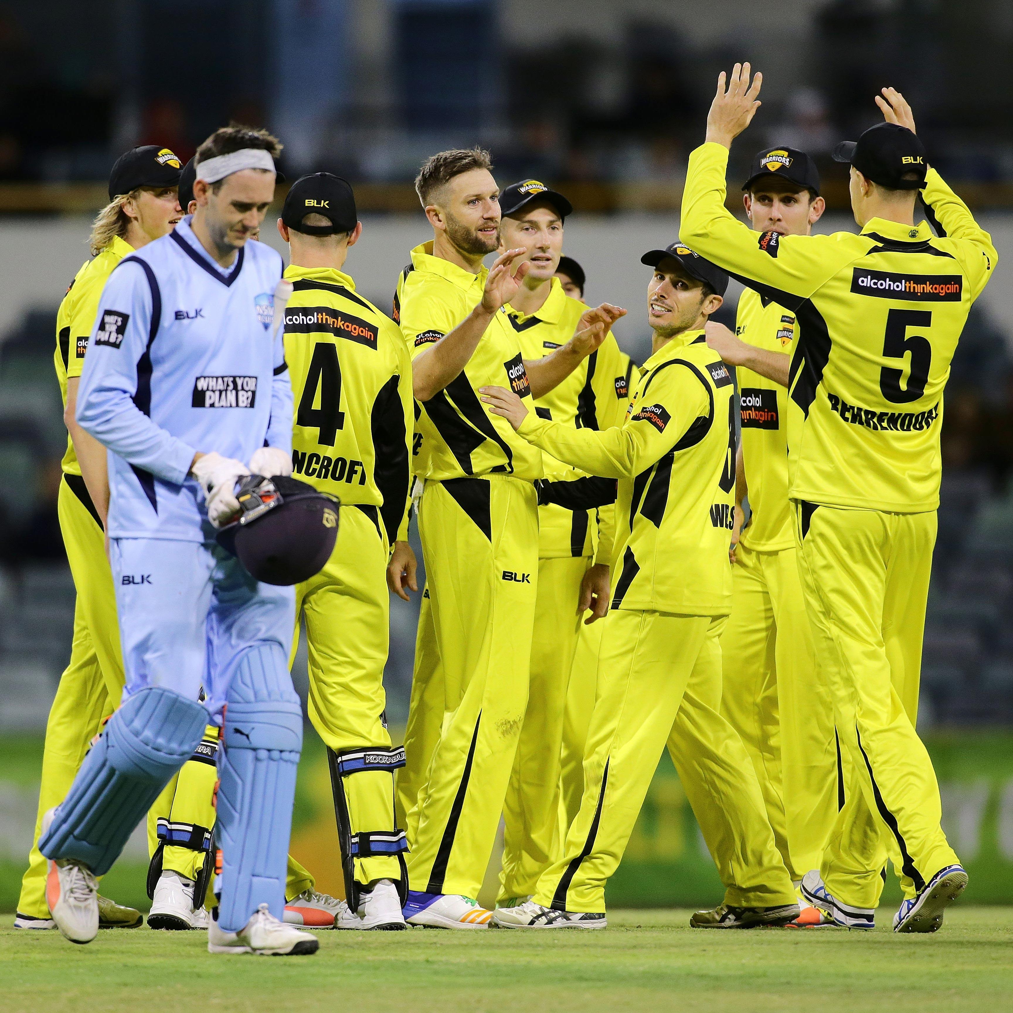 WA celebrate the wicket of NSW's Kurtis Patterson // Getty